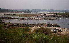 Вид на водопад Ливингстона, Конго. Фото с сайта ru.wikipedia.org