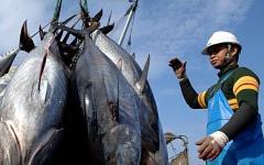 Азиатский рыбный промысел. Фото с сайта philtercommunications.com