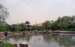 Провинция Ляонин, Китай. Фото с сайта royalmedgroup.com