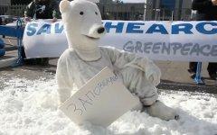 Акция «Гринпис» у офиса «Газпрома». Кадр из видео Greenpeace