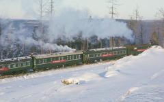 Поезд в тайге © РИА Новости, Виктор Ахломов