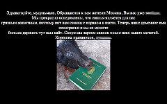 Скриншот сайта muslim.ru