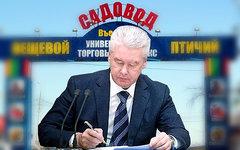 Сергей Собянин. Коллаж © KM.RU