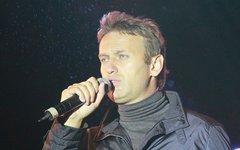 Алексей Навальный © KM.RU, Александра Воздвиженская