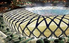 Стадион «Амазония». Фото с сайта wikimedia.org