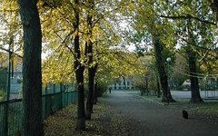 Сад им. Чернышевского. Фото с сайта wikimapia.org