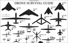 Изображение с сайта dronesurvivalguide.org