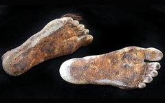 Ноги хоббита. Фото с сайта julienslive.com