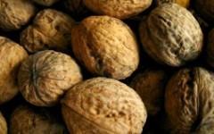 Грецкие орехи. Фото с сайта freepik.com