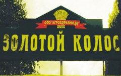 Фото из группы лагеря «ВКонтакте»