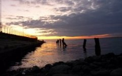 Побережье Канонерского острова. Фото с сайта vk.com