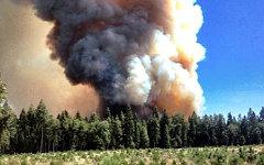 Лесные пожары в Калифорнии. Фото с сайта inciweb.org