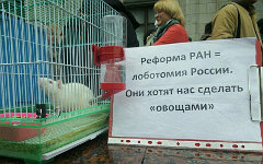 Митинг РАН у здания Госдумы © KM.RU, Алексей Белкин