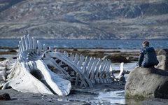 Кадр из фильма. Фото с сайта kinopoisk.ru