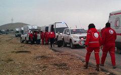 Конвой сирийского Красного полумесяца. Фото с сайта sarc.sy