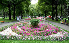 Тайницкий сад. Фото Игоря Феденко с сайта wikimedia.org