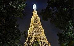 Шуховская башня. Фото с сайта moscow-tvtower.ru