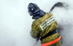 Фото пресс-службы ГУ МЧС по Вологодской области