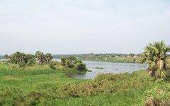Озеро Альберт. Фото с сайта wikipedia.org