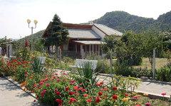 Дом Ванги в Рупите. ФотоIn-cognito с сайта wikimedia.org