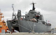 БДК «Саратов». Фото А. Бричевского с сайта flot.sevastopol.info