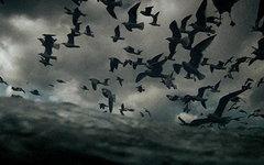 Фрагмент постера к фильму «Левиафан»