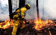 Фото с сайта fire.ca.gov