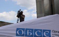 Фото с сайта osce.org