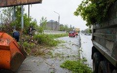 "Последствия урагана на юге Сахалина. Фото с сайта <a target=""_blank"" href=""http:"
