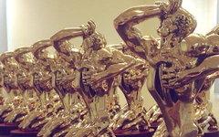 Приз-статуэтка «ТЭФИ». Фото с офстраницы премии в Facebook