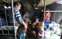 Беженцы с юго-востока Украины © РИА Новости, Сергей Пивоваров