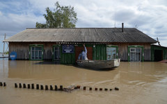 Затопленное здание школы в селе Алтайского края © РИА Новости, Александр Кряжев