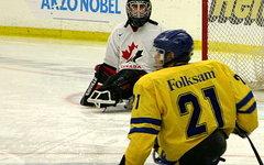 Игроки в следж-хоккей. Фото с сайта Wikipedia.org