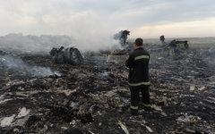 На месте крушения малазийского самолета Boeing 777© РИА Новости, Михаил Воскрес