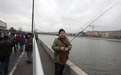 Рыбак-наблюдатель © KM.RU, Алексей Белкин