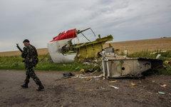 Ополченец на месте крушения лайнера Boeing 777© РИА Новости,Андрей Стенин