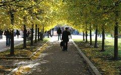 Парк © KM.RU, Филипп Киреев