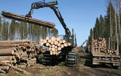 Фото с сайта ko44.ru
