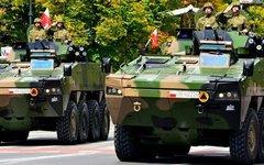 Польские военные. Фото с сайта mon.gov.pl