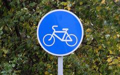 Знак «Велосипедная дорожка» © KM.RU, Илья Шабардин