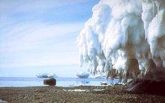 Лето в Антарктике. Фото с сайта megabook.ru