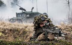 Учения НАТО в Литве. Фото с сайта nato.int