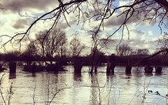 © KM.RU, Фото пользователя Instagram phdavies