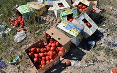 Уничтожение санкционных продуктов © РИА Новости, Виктор Толочко