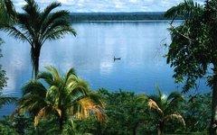 Гайана. Фото с сайта wikimedia.org