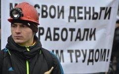 Фото с сайта lis-lg.ru