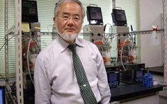 Йосинори Осуми. Фото со страницы ученого в Facebook