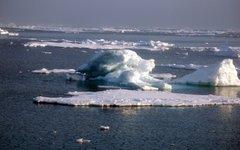 Фото с сайта arctic.noaa.gov