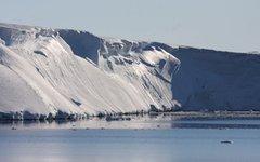 Фото: Esmee van Wijk / Australian Antarctic Division