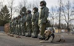 Фото с сайта Минобороны РФ